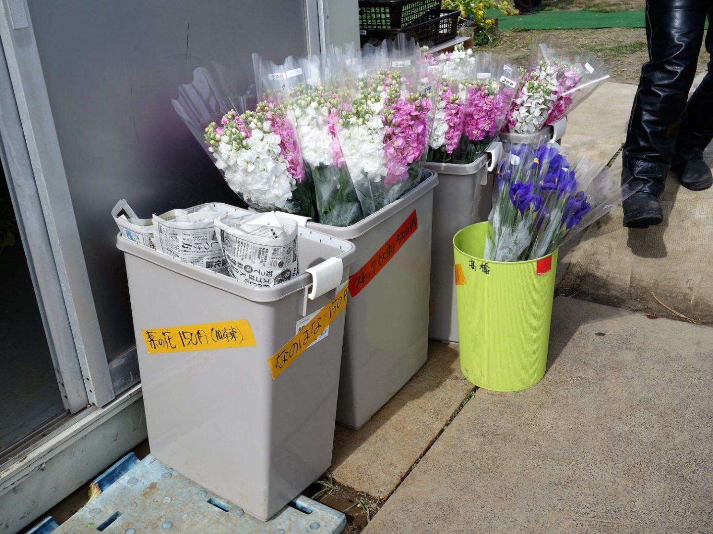 Wrapped up flowers to take home