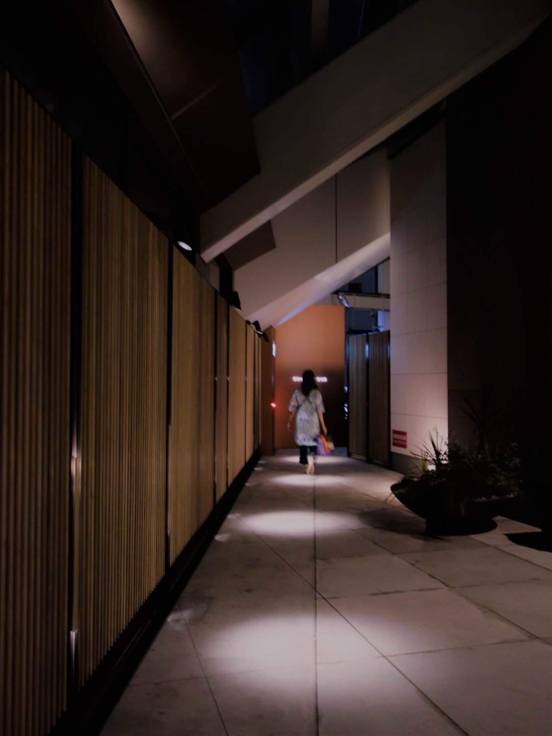 Hallway to Rooftop Bar
