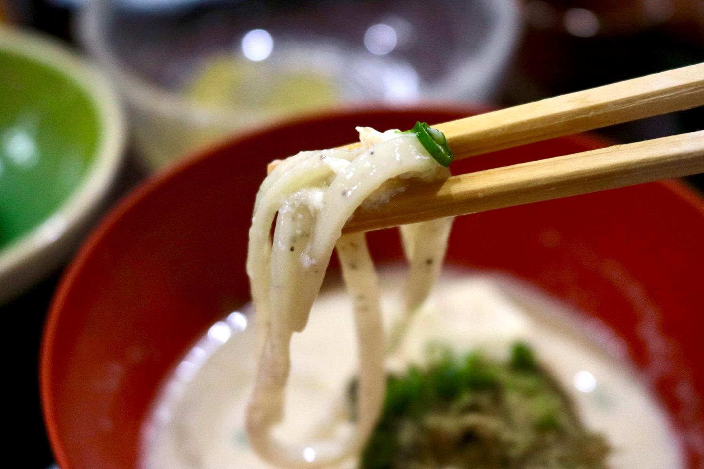 Soy milk udon noodles