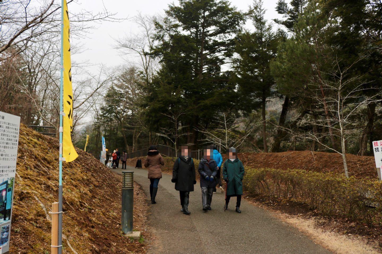 濃溝の滝へ向かう遊歩道