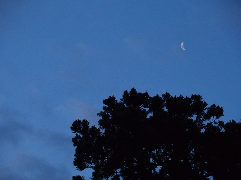 Walking to Asahi-Ga-Mori (Sunrise Woods)