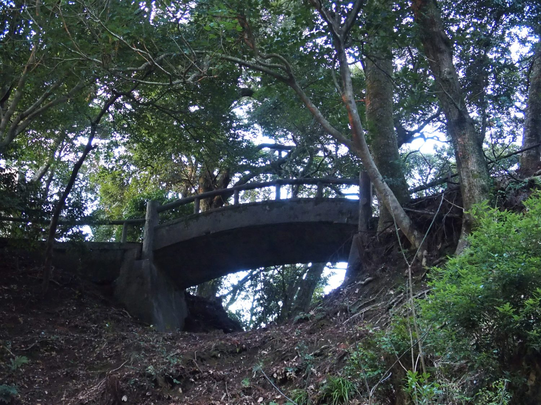 Walking back from Asahi-Ga-Mori (Sunrise Woods)