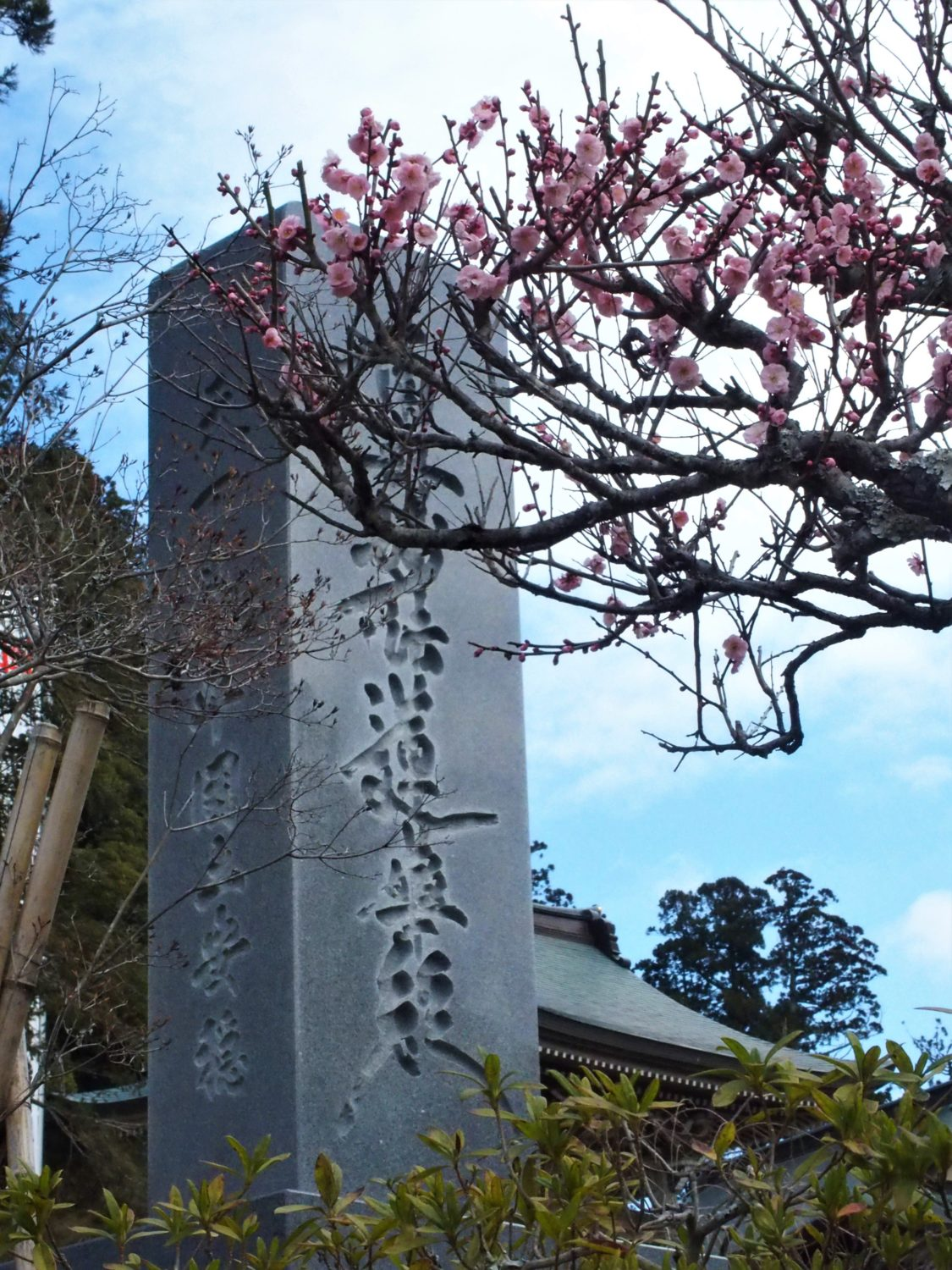 """Ume"" plum trees at the entrance of Seichoji Temple"