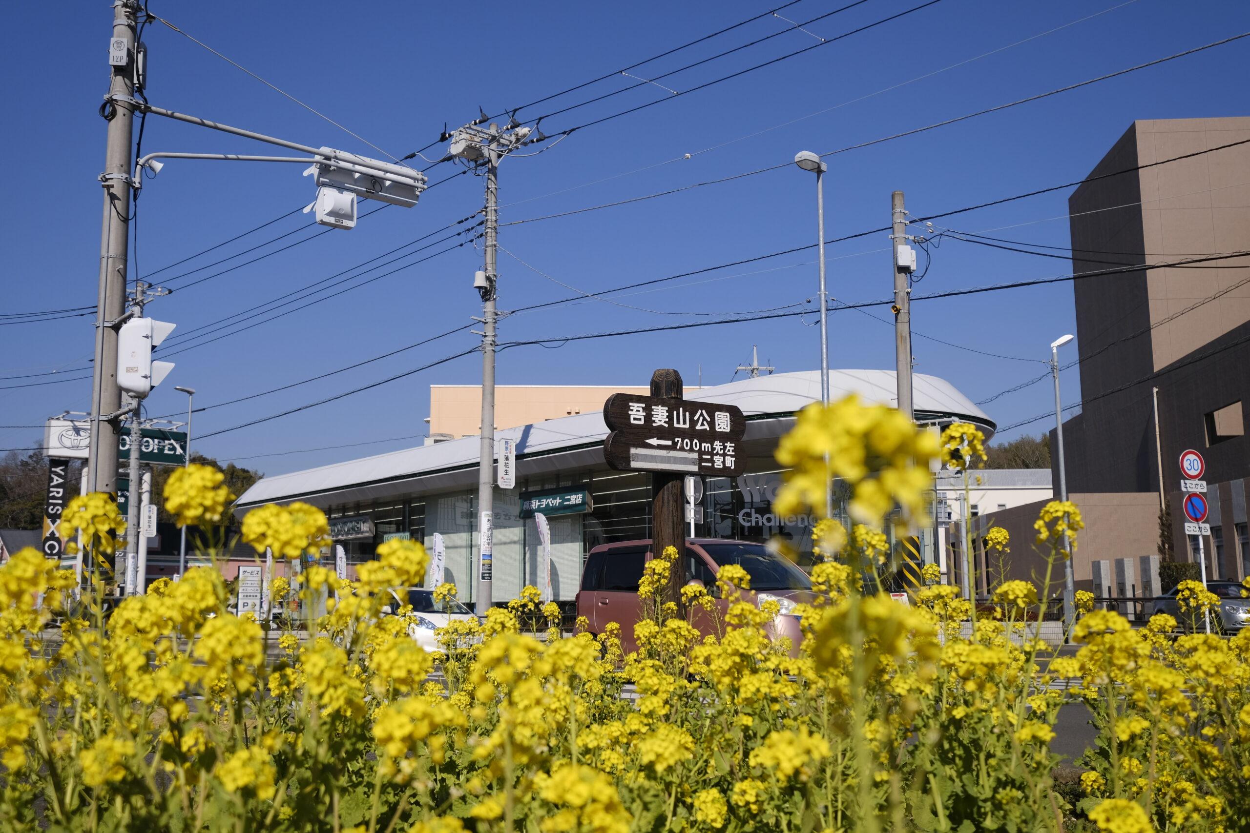 二宮駅からすぐの案内板の写真