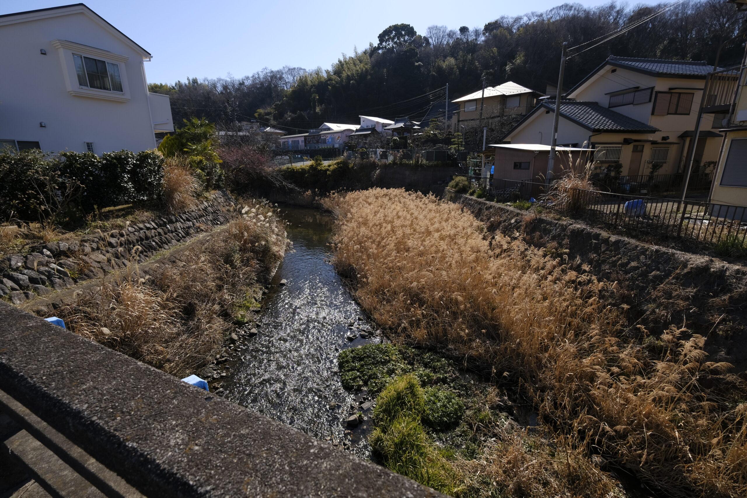 二宮町を縦断する葛川の写真