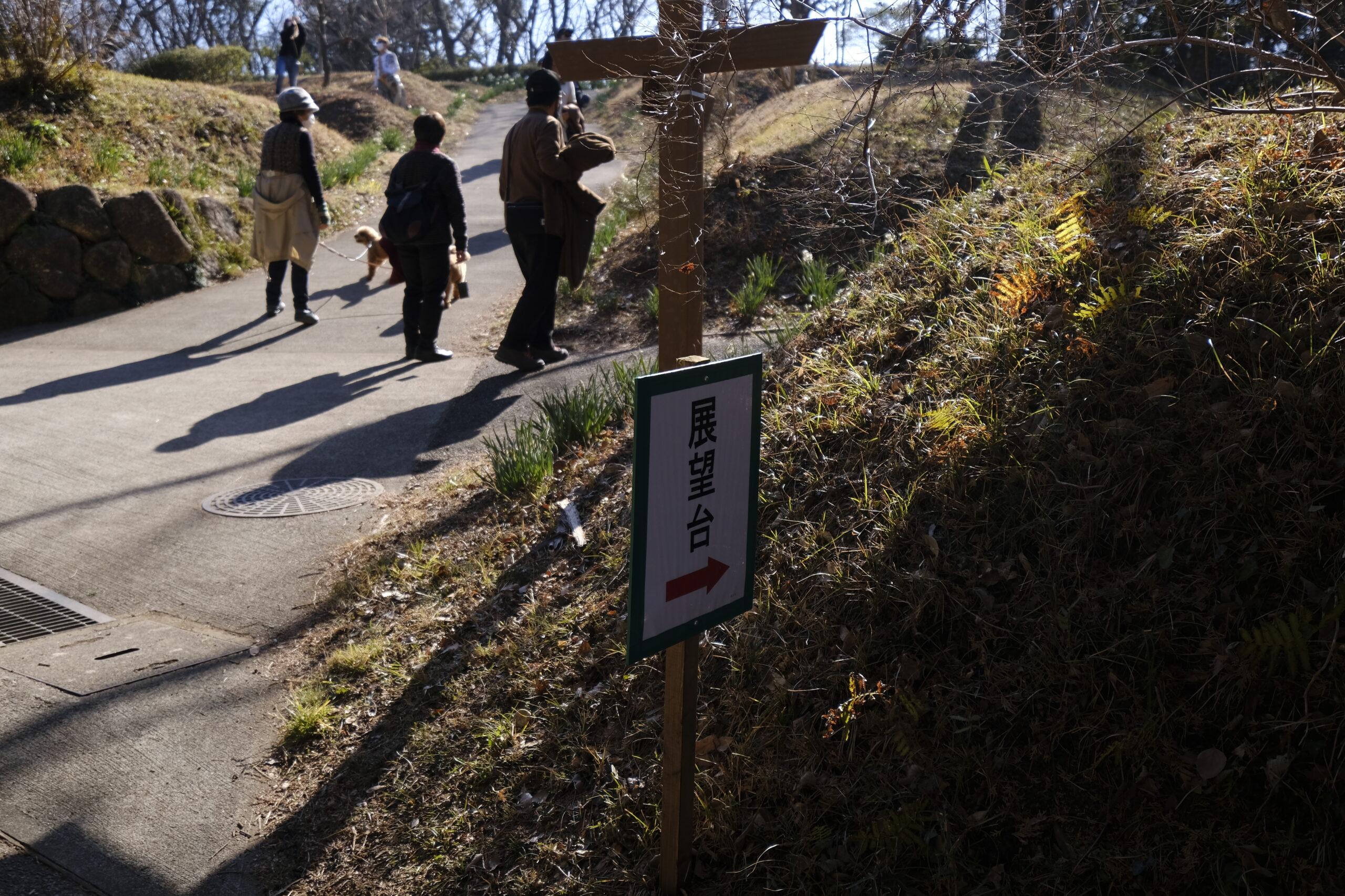 吾妻山公園展望台を指し示す看板の写真