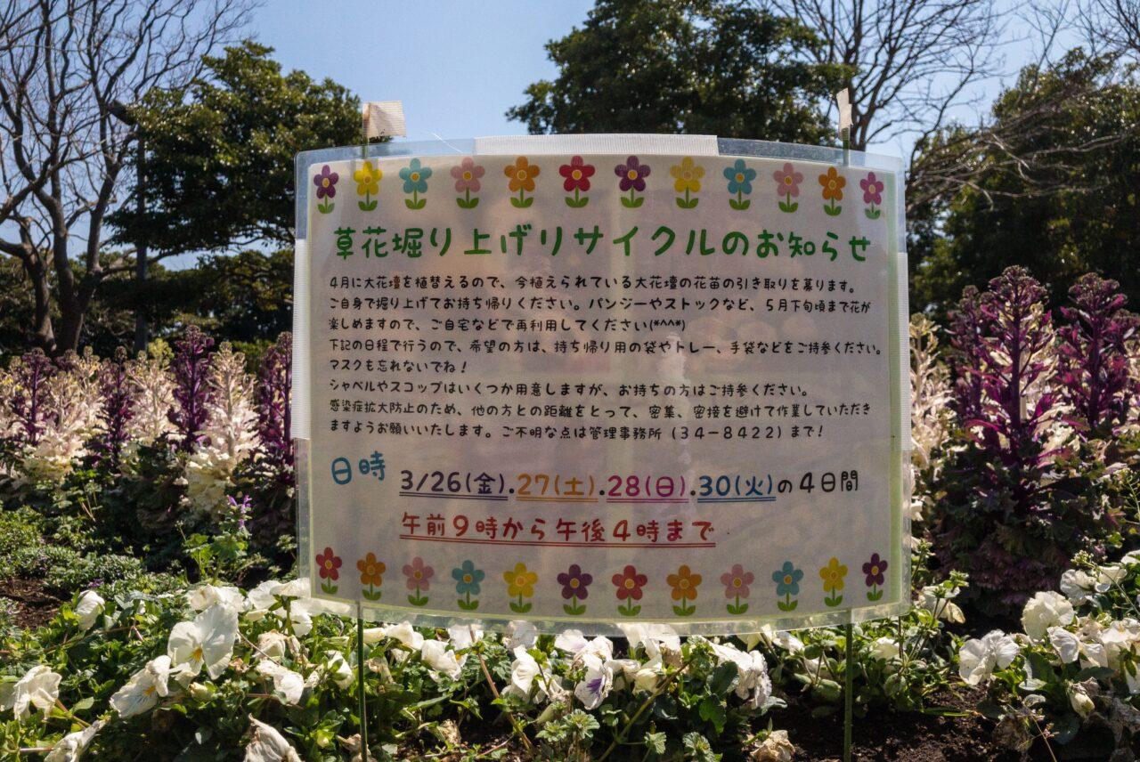藤沢市長久保公園都市緑化植物園で草花掘り上げリサイクルが実施されます