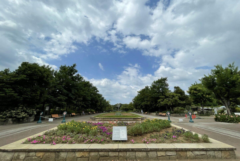 藤沢市長久保公園都市緑化植物園のメインストリート