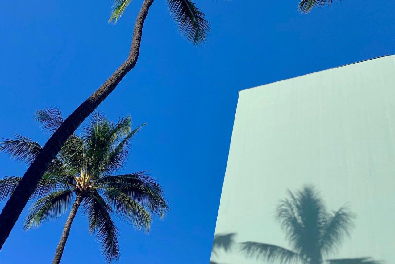 茅ヶ崎にて「Aloha nui loa 〜たくさんの愛をこめて〜 ホノルルウィーク2021」が開催されます